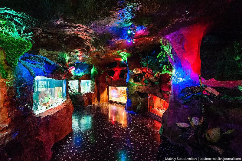 Развлечения в Крыму 2020 – аквариум Евпатории