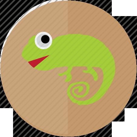 Игуаны Евпаторийского Аквариума
