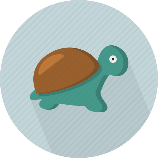 Черепахи Евпаторийского Аквариума